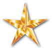 Zero Injury Safety Awards Gold Star